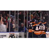 Greenville Swamp Rabbits celebrate a goal